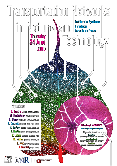Transportation Networks in Nature and Technology workshop